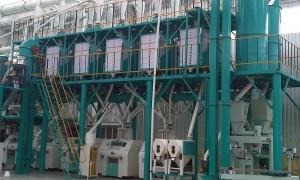 100t/24h Maize Flour Milling Machine