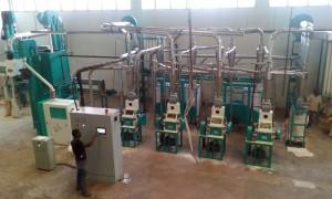 20t/24h Maize Flour Milling Machine