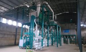 80t/24h Wheat  Flour Milling Machine