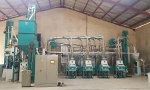 30t/24h Maize Flour Milling Machine