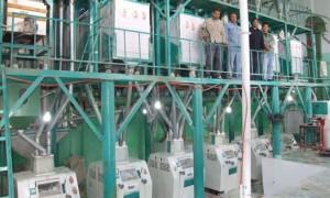 60t/24h Wheat  Flour Milling Machine