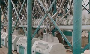 200t/24h Wheat  Flour Milling Machine