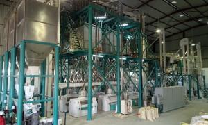 250t/24h Maize Flour Milling Machine