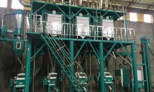 40t/24h Wheat  Flour Milling Machine